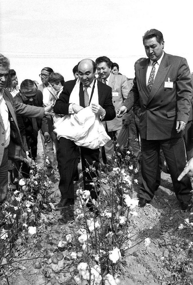 Өзбекстандын талаасында пахта терген Акаев, 1992-жылы