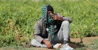 Афганистандык качкын. Архивдик сүрөт