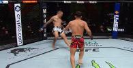 Минувшей ночью в США прошел очередной турнир UFC Vegas 37. Опубликована видеоподборка лучших моментов.