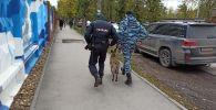 Сотрудники полиции со служебной собакой на улице Перми