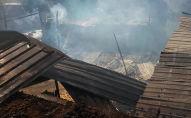 При пожаре в сарае в селе Александровка сгорели заживо 15 овец