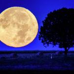 Полная луна заходит за холмы недалеко от Вехрхайма (Германия). 21 сентября 2021 года