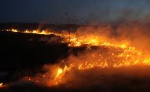 Пожар в горах. Архивное фото