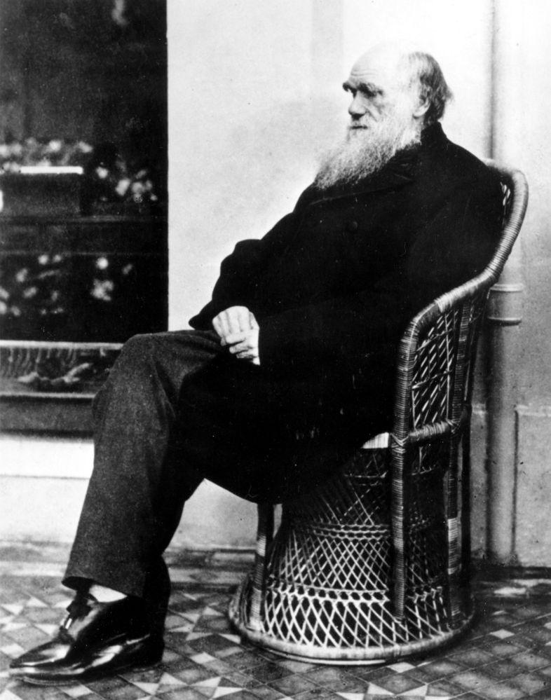 Ученый Чарльз Дарвин
