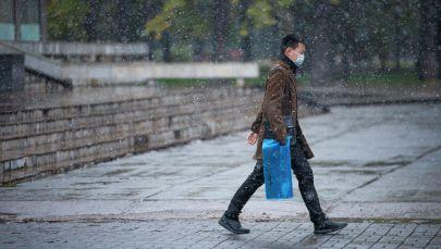 Бишкектин көчөсүндө бараткан жаран. Архивдик сүрөт