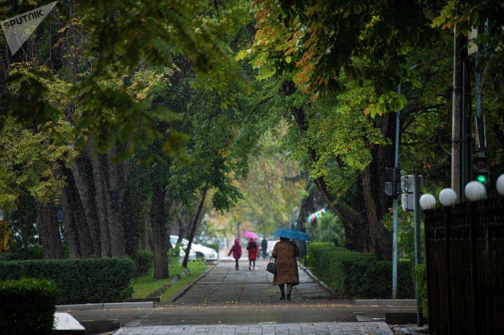 Из-за непогоды в центральных парках было мало гуляющих