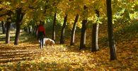 Девушка гуляет с собакой осенним днем. Архивное фото