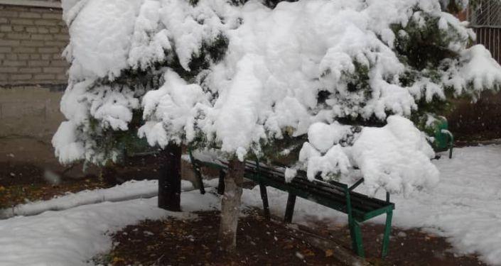 Осенний снег в городе Каракол. 07 октября 2021 года