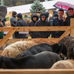Кочкоры-производители на выставке Агротехэкспо 2021