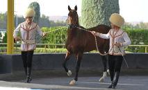 Казакстандын президенти Касым-Жомарт Токаевге Түркмөнстанда белек кылынган ахалтекин күлүгү