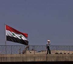 Зарубежные страны: Сирия