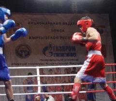Турнир по боксу к юбилею Генпрокуратуры стартовал в Бишкеке