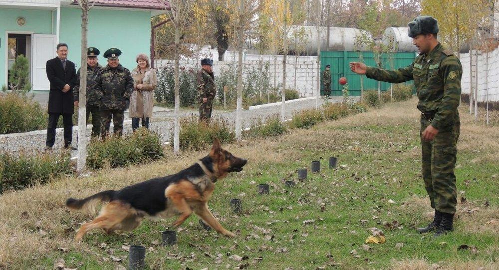 Депутаты Жогорку Кенеш побывали на границе
