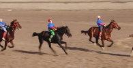Соревнования по конным видам спорта на ипподроме Ак-Кула