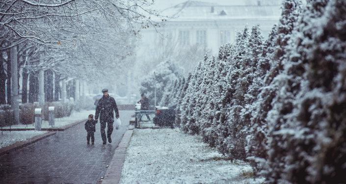 Путешествие с отцом в малоизвестный зимний мир.