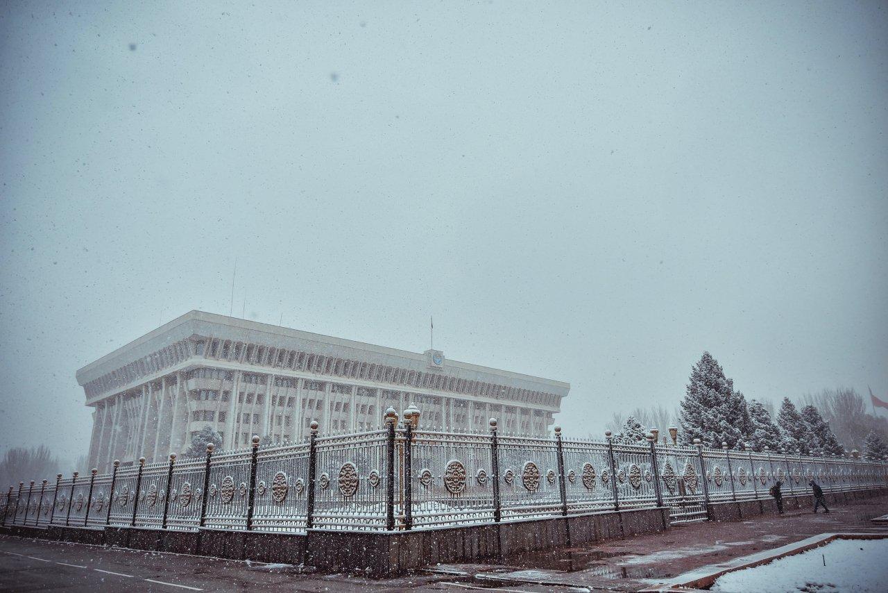 Белый дом и белый снег.