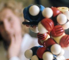 ДНКнын модели. Архив
