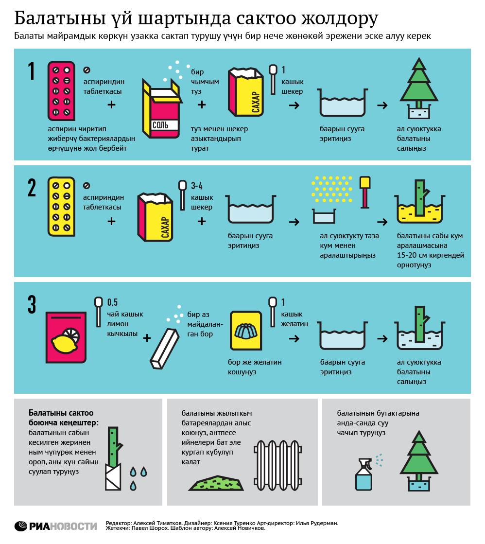 Способы сохранения ёлки в домашних условиях (кырг)