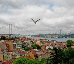 Стамбул шаарынан көрүнүш. Архив