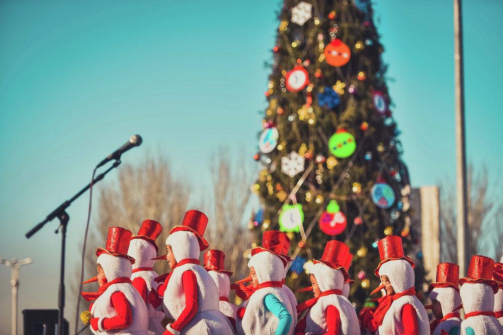 Итогом праздничного шествия стал новогодний концерт.