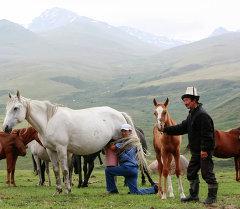 Ак-Талаа районунун Жаңы-Тилек айылынан кутурма чыгып, карантин киргизилди