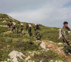 Сирия өкмөтүнүн аскердик армиясы. Архив