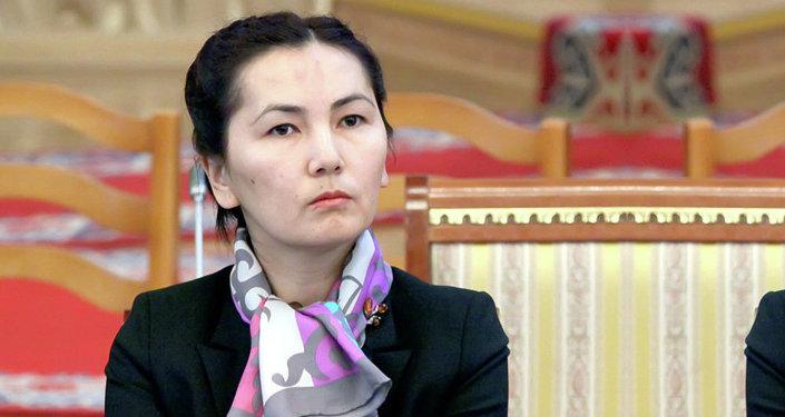 Жогорку Кенеш ознакомился с итогами работы временной депутатской комиссии по расследованию факта задержания Н.Тюлеева