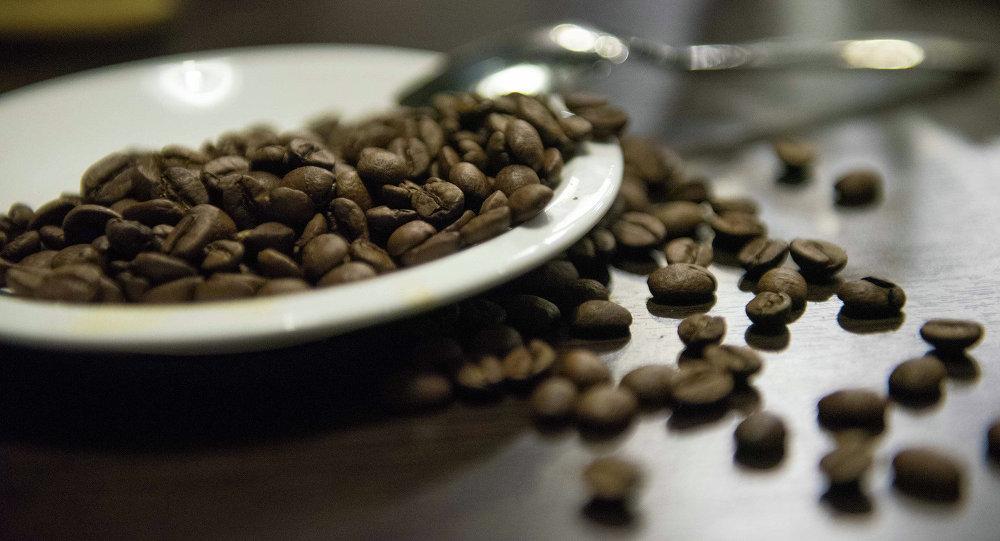 Кофе буудайлары. Архив