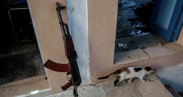 РИАнын атайын кабарчысы Сирияда жихадды өз көзү менен көрдү