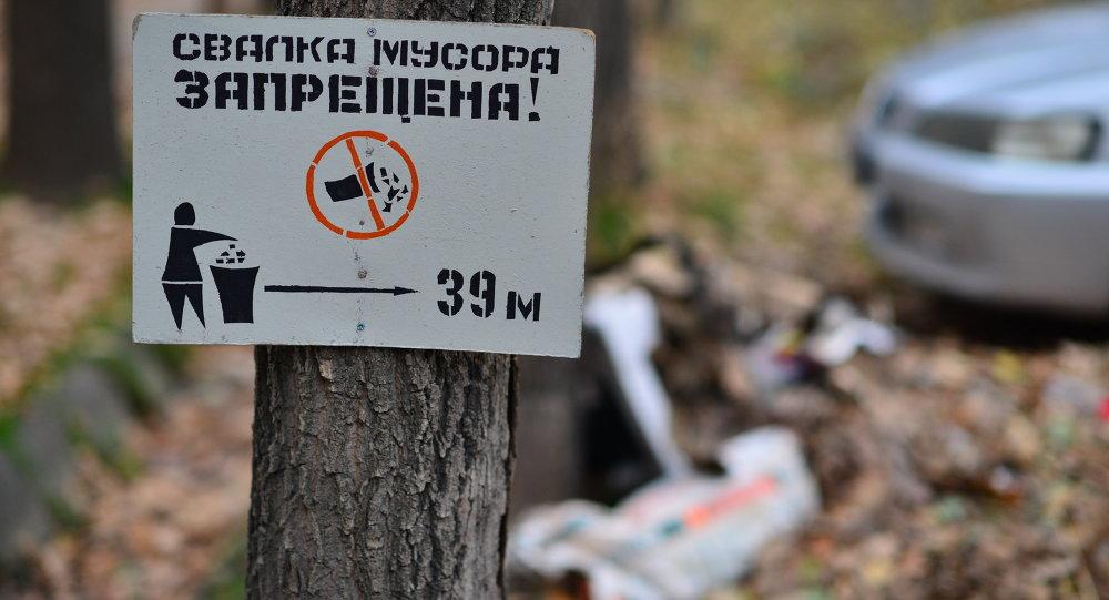 Табличка Свалка мусора запрещена. Архивное фото