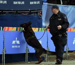 Полиция города Нью-Йорк