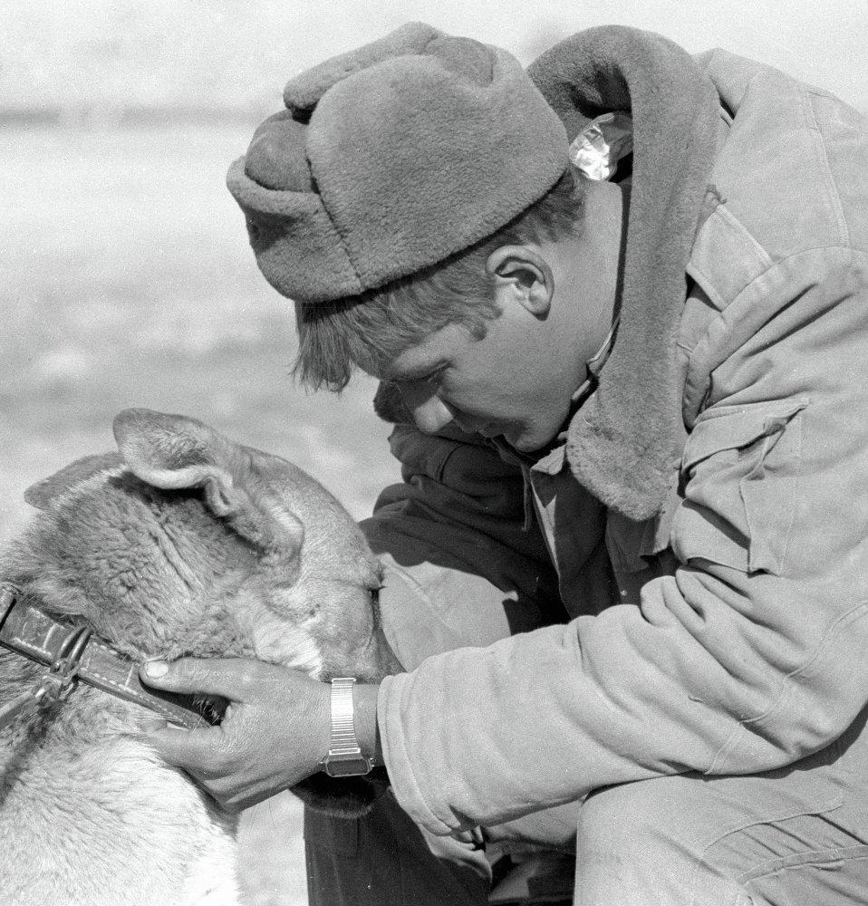 Солдат и служебная собака