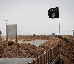 Флаг Исламского государства у моста. Архивное фото