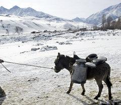 Сельский быт Кыргызстана. Архивное фото
