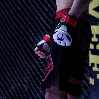 Архивное фото бойца ММА, во время соревнований