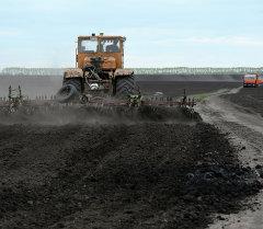 Весенне-полевые работы в Новосибирской области
