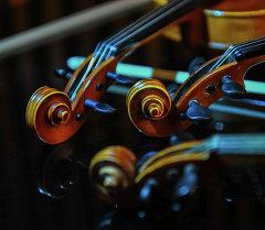 Музыкальные смычковые инструменты. Архивное фото