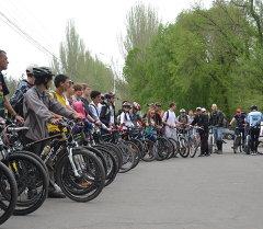 Велосипедисты ждут команды для старта велопробега длиной более 40 километров.