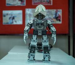 Кара жорго жана Gangnam Style бийлеген робот. Архив