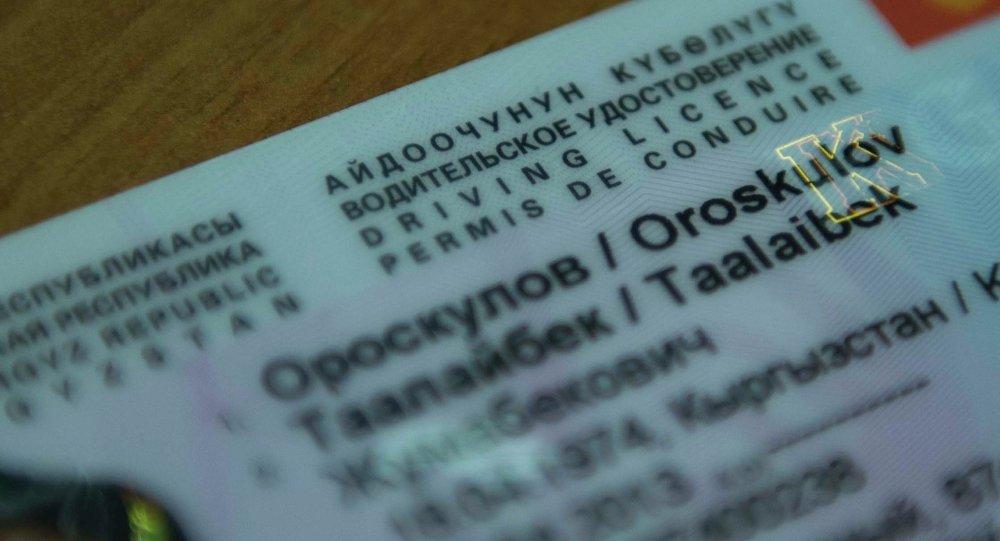 Мигранты из КР рискуют остаться без работы в РФ из-за водительских прав