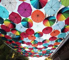Разноцветные зонты. Архивное фото