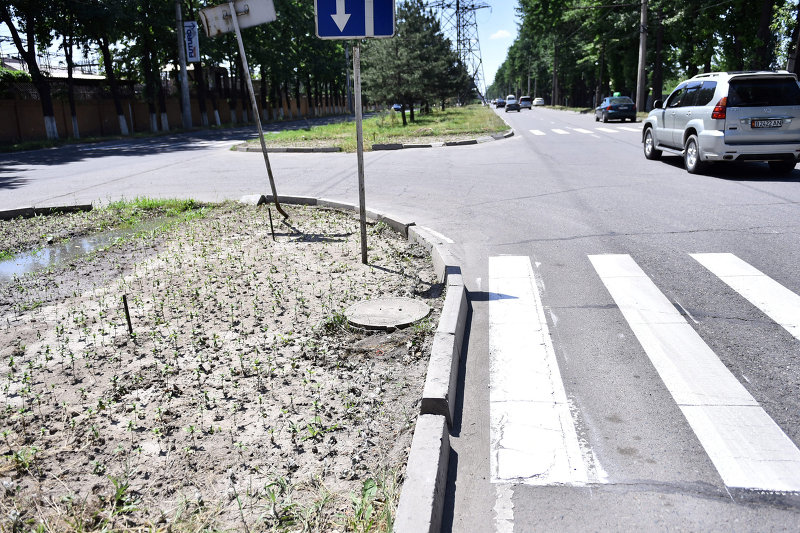 Пешеходная зебра в Бишкеке