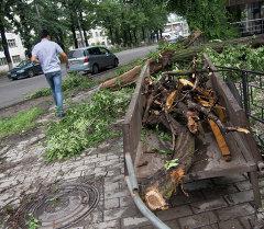 Бороондуу шамалдан Бишкек миллион сомдук зыян тартты