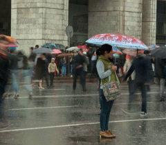 Бишкекте жамгыр. Архивдик сүрөт