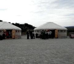 БРИКС жана ШКУнун саммитиндеги  аюу, бал, малакай жана самоор