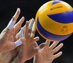 Матч по волейболу. Архив