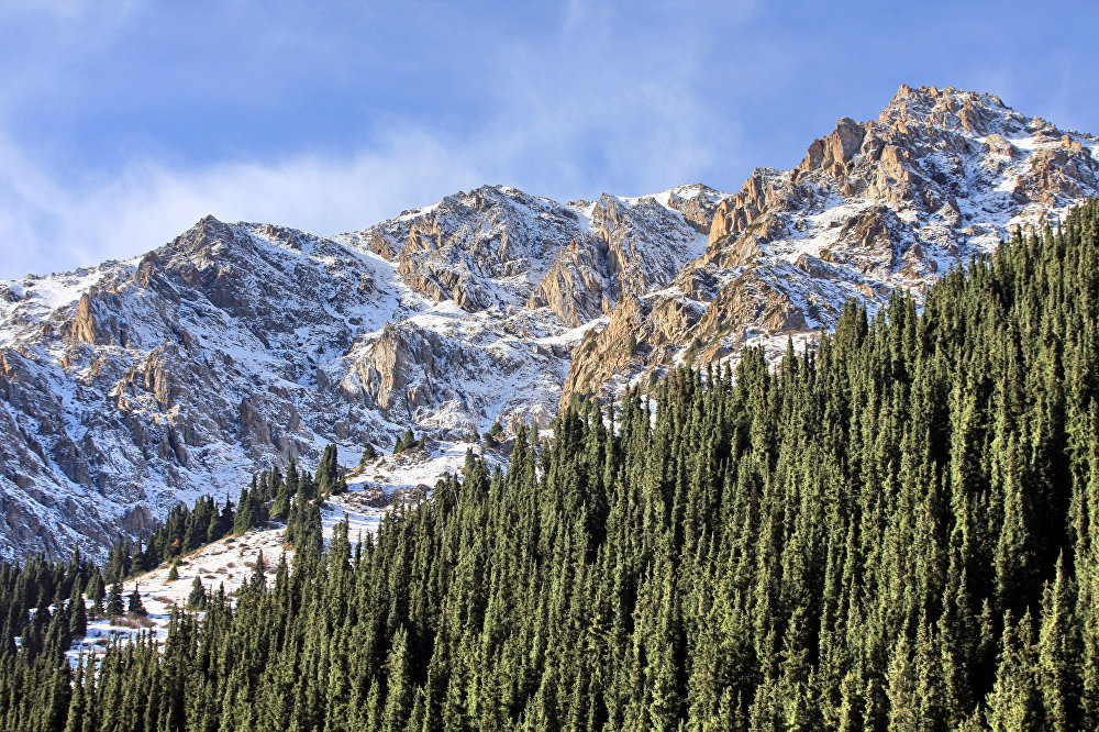 Ущелье Чычкан. Здесь до сих пор сохраняется уникальная первозданность природы, над которой ни человек, ни время не властны. Горные склоны, покрытые красным горным маком, березовые рощи, сосновые леса, знаменитые тянь-шаньские ели, водопад, размеры которого впечатлят любого, а на склонах величественных гор лежат знаменитые ледники Кыргызстана.