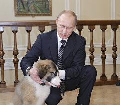 Президент России Владимир Путин со своей собакой. Архивное фото