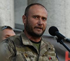 Лидер организации Правый сектор Дмитрий Ярош выступает на Народном вече в Киеве. Архивное фото