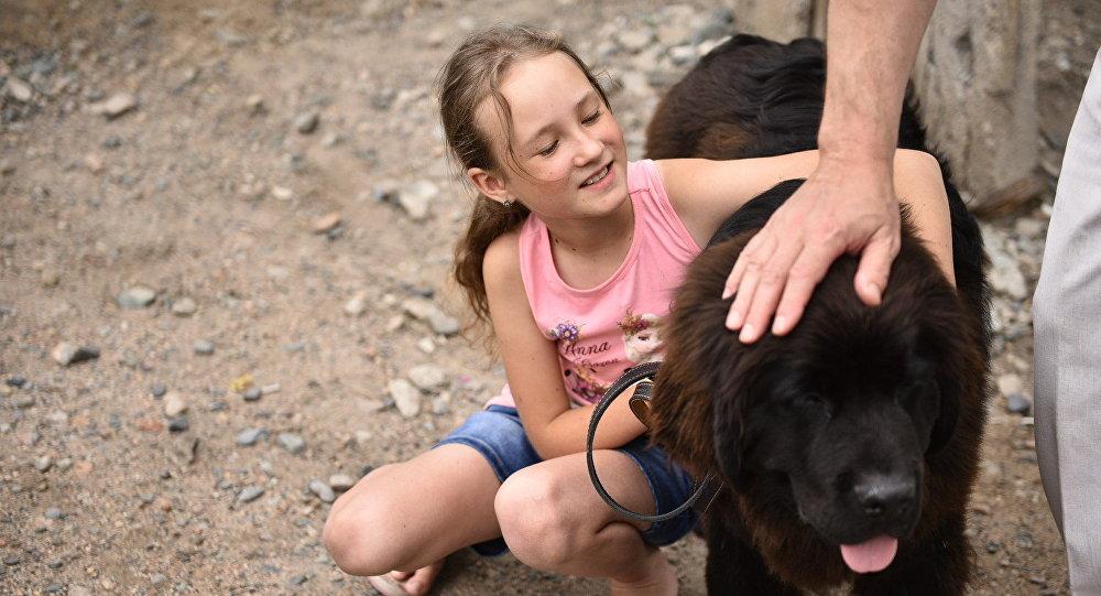 Президент России Владимир Путин подарил десятилетней Даше Яицкой из Балыкчы щенка ньюфаундленда.
